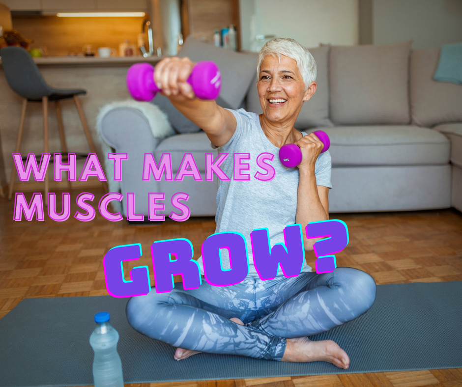 What makes muscles grow?