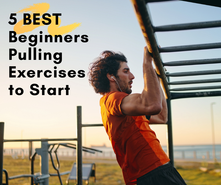 5 BEST Beginners Pulling Exercises to Start